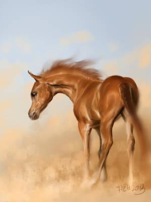 born in the desert by Animal75Artist