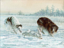 in pursuit of the hare