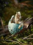 hatching Pegasus
