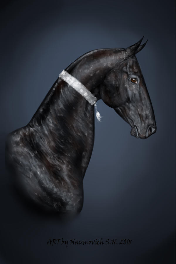 Black Ahalteke aty by Animal75Artist