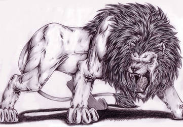 Lion 1 by Dokuro