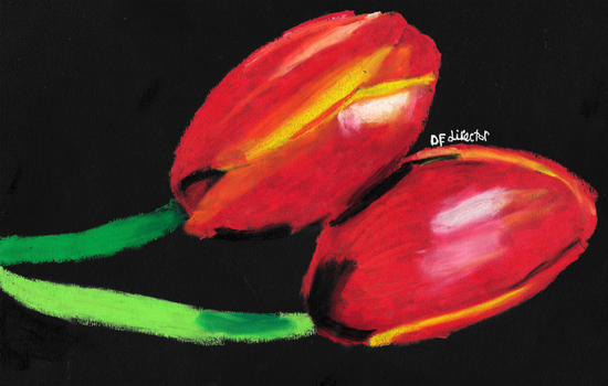 Red and Yellow Tulips (Redone)