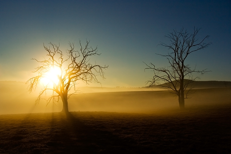 Sunrise in the mist by carlosthe