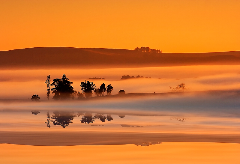 Playing in the mist by carlosthe
