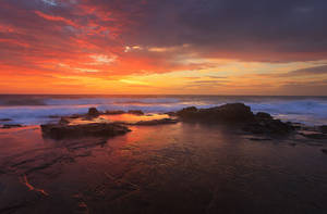 Sunrise on the Coast by carlosthe