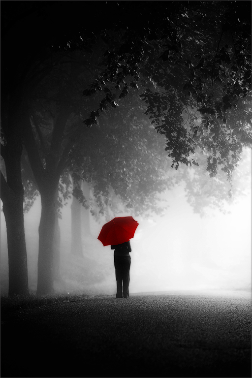 Red Umbrella by carlosthe