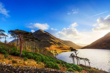 Scotland by carlosthe