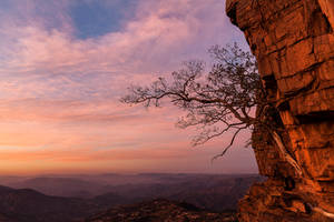 Pink Sky at Night by carlosthe