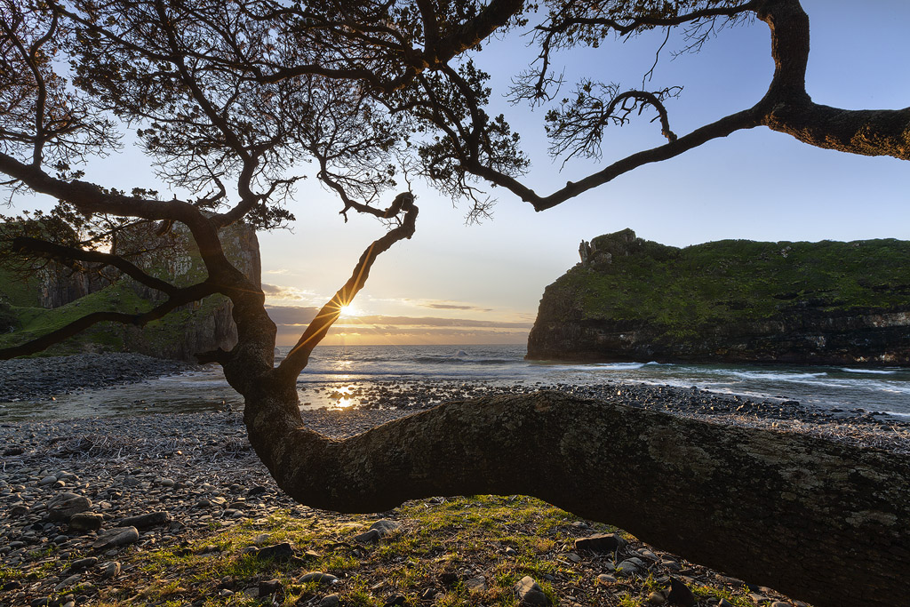 The Wild Coast by carlosthe