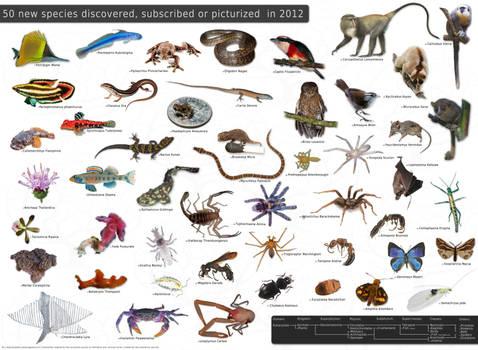 Species 2012