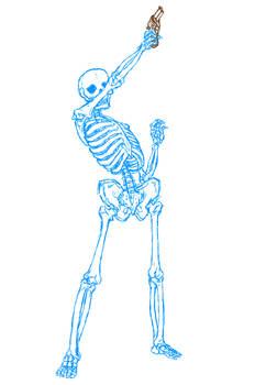 Body Anatomy - 008