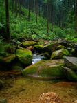 Stream in mountains II