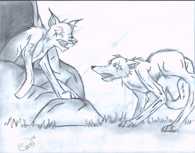 lynx vs wolf gallery