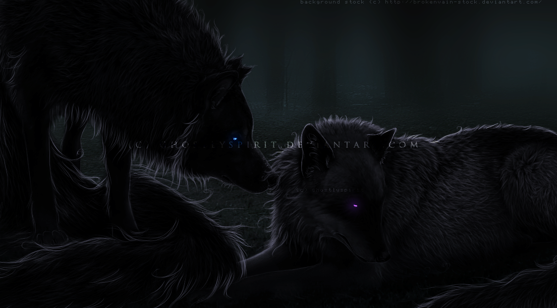 Black Wolf With Purple Eyes One  with purple eyes Black Wolf With Purple Eyes