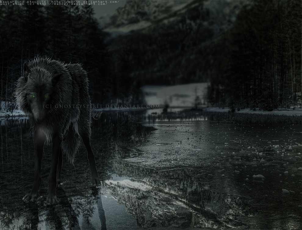 Frostbite by ghostlyspirit