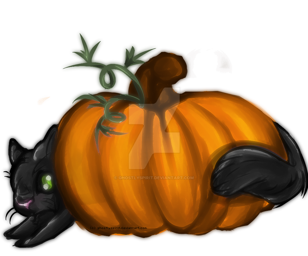Pumpkin Cat by ghostlyspirit