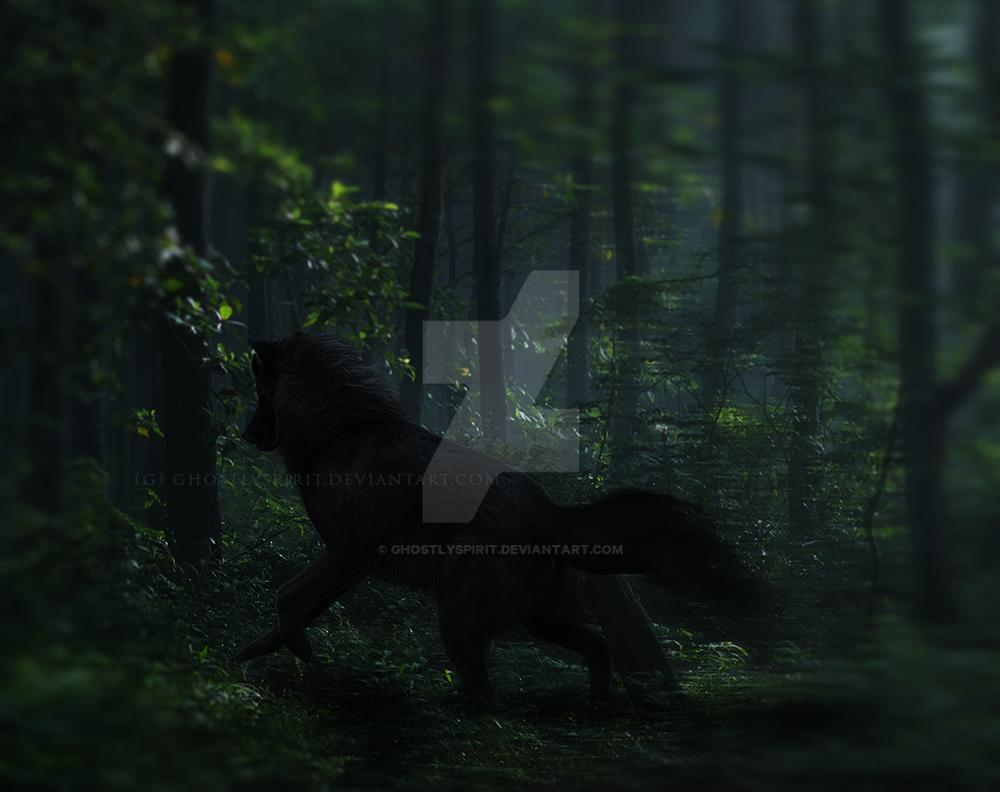 Shadow Prince by ghostlyspirit