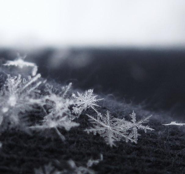 Snowflakes by schimmio52