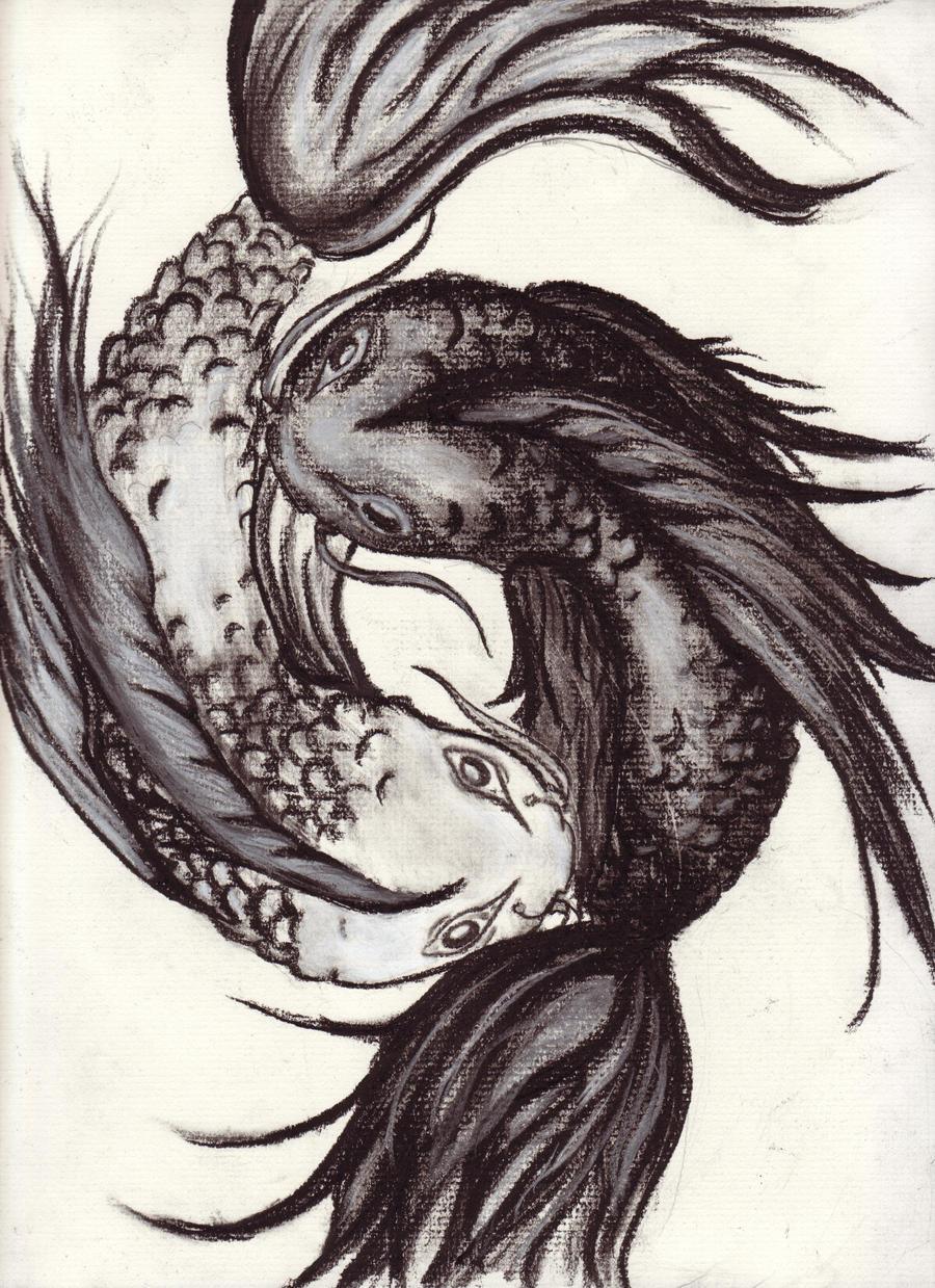 Yin Yang Koi Fish Drawing