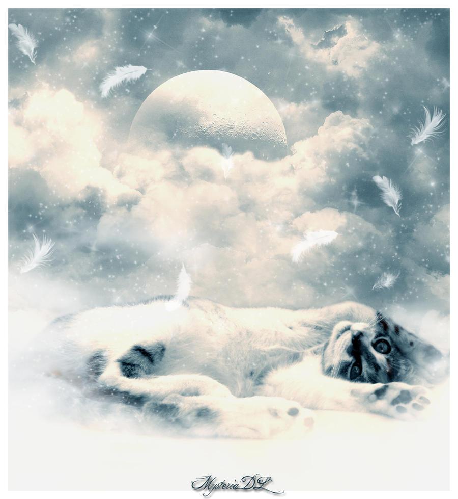 Гифка облако и кот, днем рождения