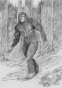 Bigfoot in the woods