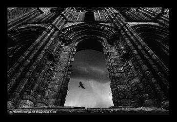 the raven by draven-clarke