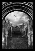 under silent wings by draven-clarke