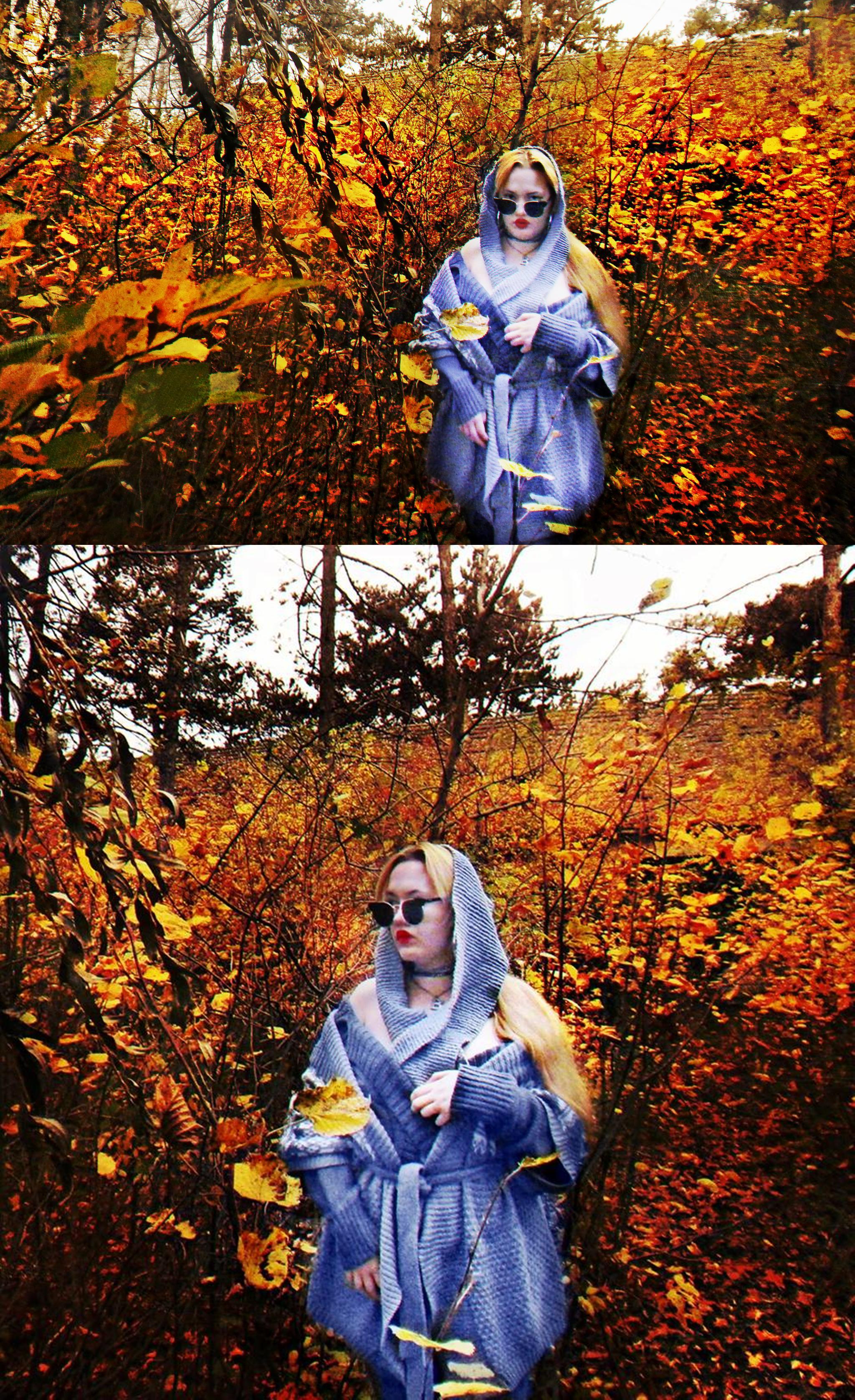 Almesiva-Moonshadow's Profile Picture