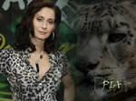 Jungle Cat Pia