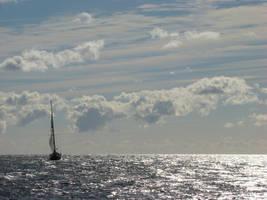 Sunny sea view by Alistanniel