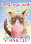 -- Grumpy Cat tribute --