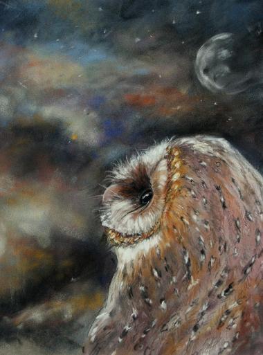 Eveningwatch by DaisyreeB