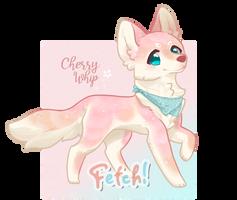 Cherry Whip Puppy cuteness