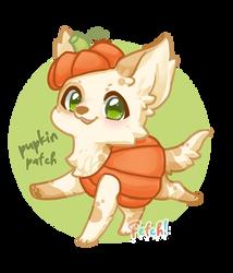 Fetch! Pupkin Patch
