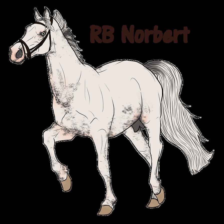 Norbert by Rosenbrooke