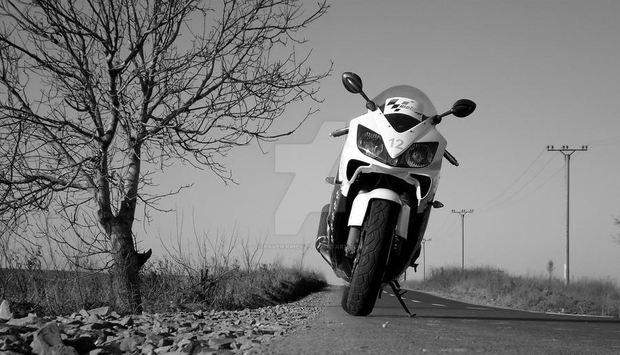 Honda CBR600 by raven30hell