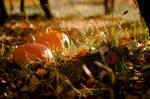 Autumn by Amanmahi
