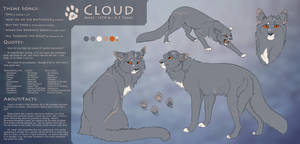 Cloud || 2018 Wildcat Reference