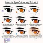 Eye Colouring Tutorial by Mushi