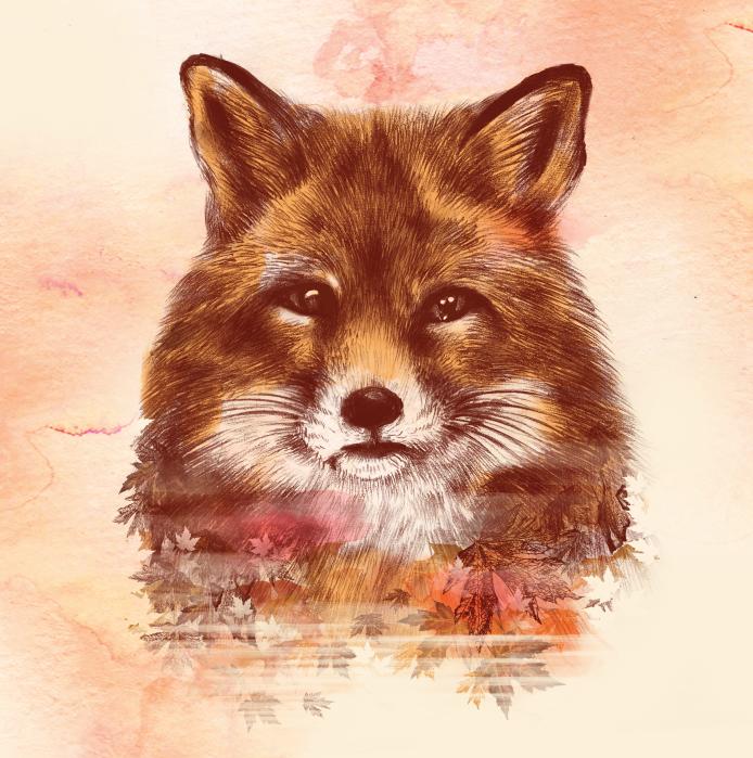 The Red Fox by dandingeroz
