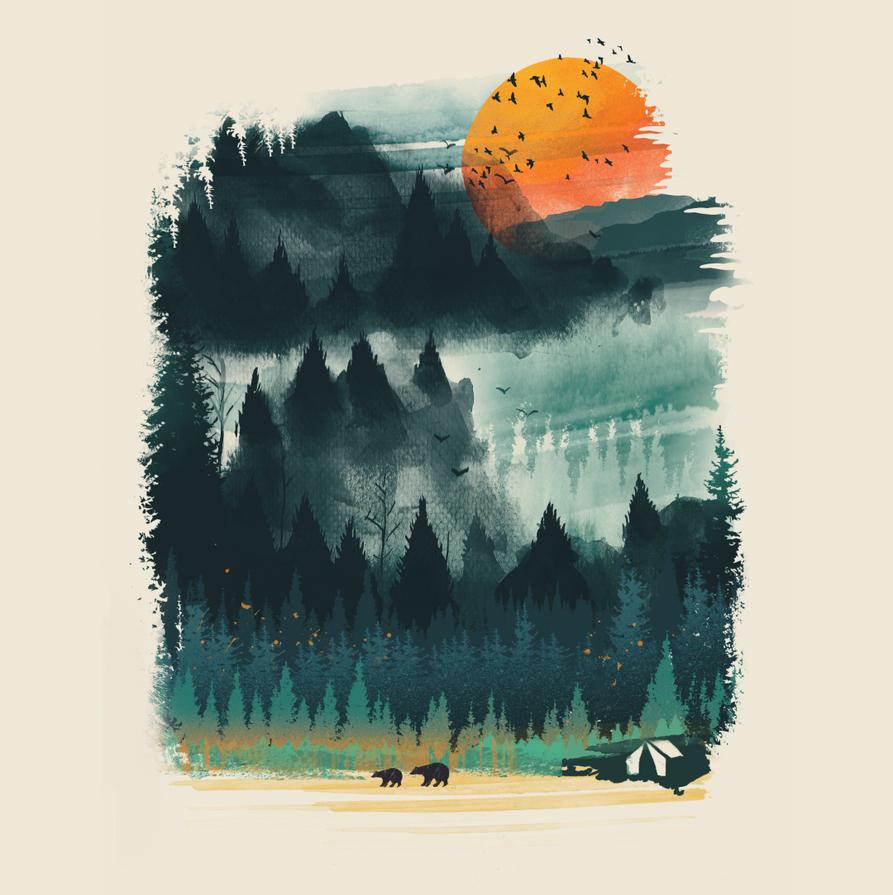 Wilderness by dandingeroz