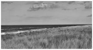 .:  baltic sea :.