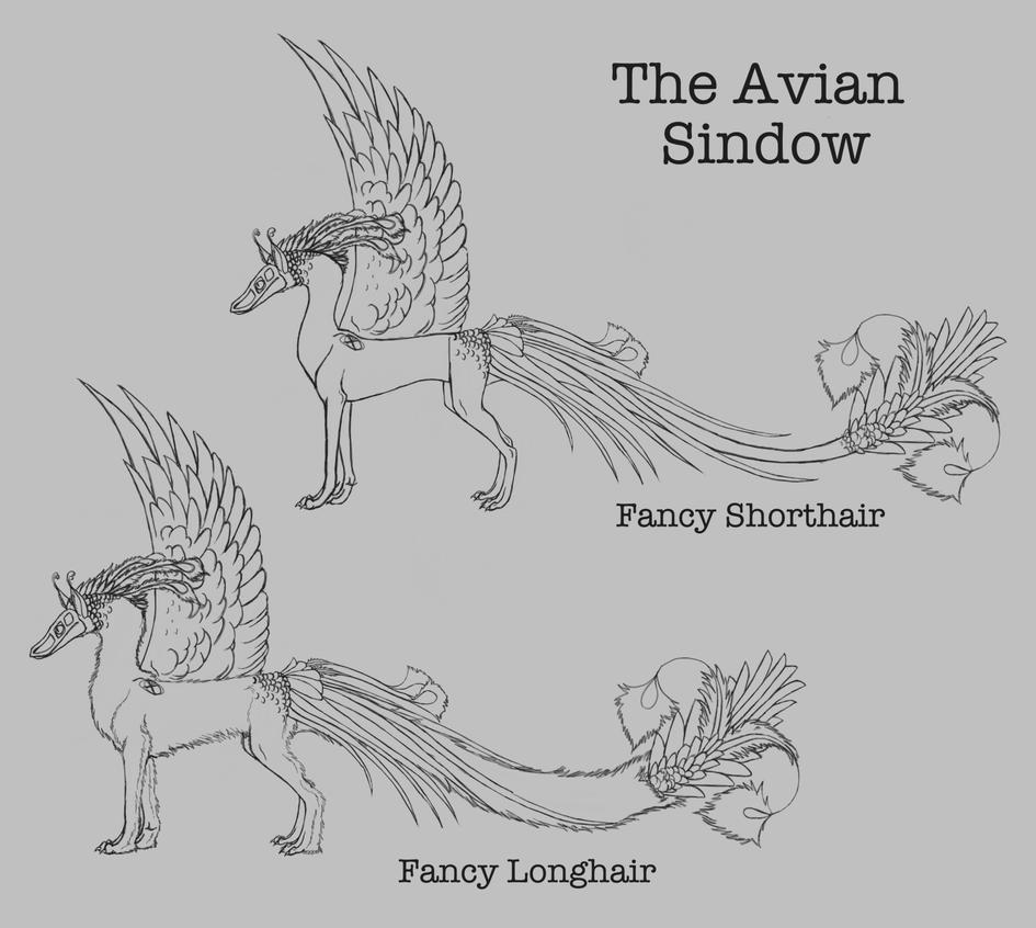 The Avian Sindow: Fancy by ReapersMenagerie