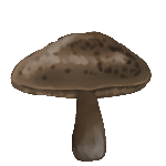 Toadstool by ReapersMenagerie