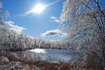 New Jersey Arctic