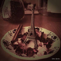 Paris on a plate by unknown-dark