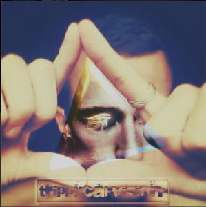 TrippycalVision's Profile Picture