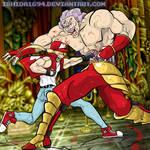 TERRY vs KRAUSER