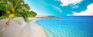No 102 and 103 Beach Fun Exeggcute and Exeggcutor by Hyperagua