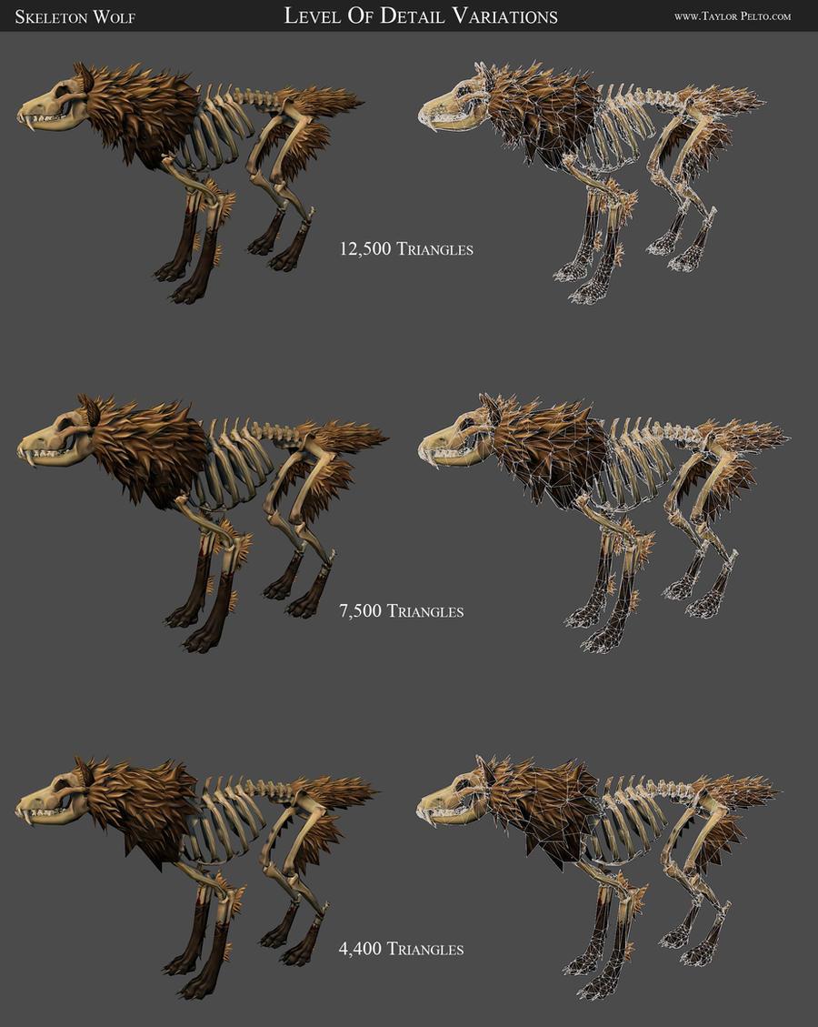 Skull Anatomy Game